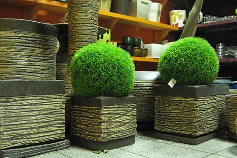 Квадратни керамични кашпи